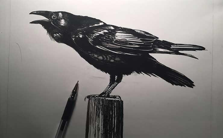 http://tobarstudio.com/wp-content/uploads/2021/02/Crow_1_4-740x457-1-740x457.jpg