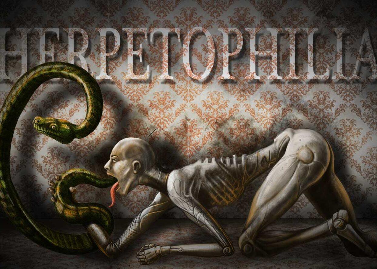 http://tobarstudio.com/wp-content/uploads/2021/02/herpetophilia-1244x888.jpg